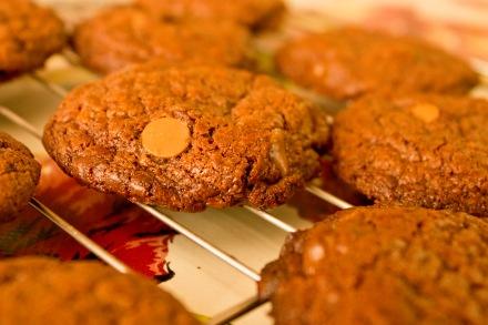 cookiescloseup